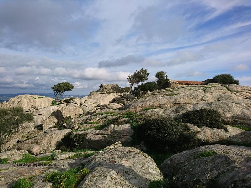 サルデーニャ島 ルオゴサント